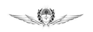 Fuerza Aerea